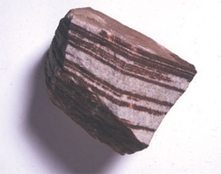 Sedimentary sandstone with iron oxide bands