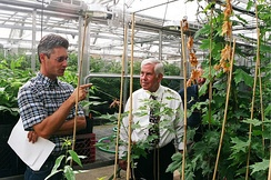 Senator Lugar tours an agricultural research facility.