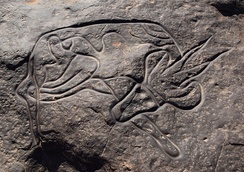 A petroglyphic Saharan rock carving from southern Algeria depicting an antelope or gazelle.
