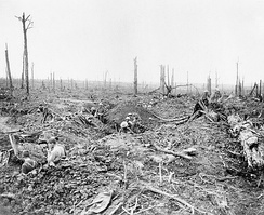 Soldiers digging a communication trench through Delville Wood