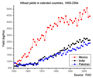Wheat yields in Mexico, India and Pakistan, 1950 to 2004. Baseline is 500 kg/ha.