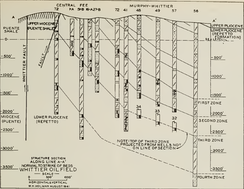 Whittier Oil Field geologic cross section