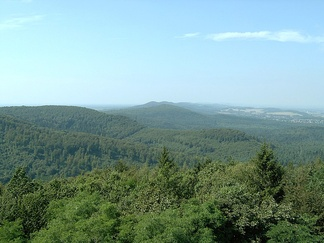 View over the Teutoburg Forest