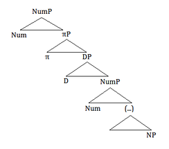 Tree representation of Lorenzo's view of a partitive structure [1]