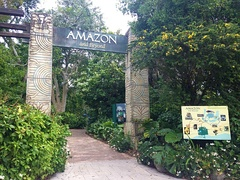 Amazon and Beyond entrance
