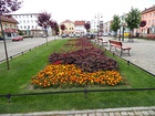 Flower beds in Chojnów