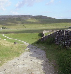 Limestone hills and dry-stone walls in the west of the Yorkshire Dales. This part of the national park is popular with walkers due to the presence of the Yorkshire three peaks.