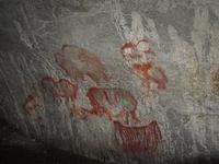 Рисунки в Каповой пещере.jpg