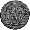Eagle of Zeus[1] on the Ptolemaic coin of Ptolemaic Kingdom
