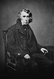 Chief Justice Roger Taney, the author of the majority opinion in the Supreme Court's Dred Scott decision