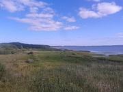 Вид Плещеева озера с вышки экологической тропы «Серая цапля»