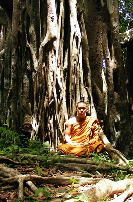 Living at the root of a tree (trukkhamulik'anga) is one of the dhutaṅgas, a series of optional ascetic practices for Buddhist monastics.