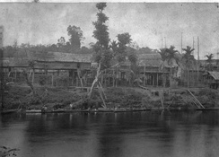 The Dayak longhouses along the Kahayan River taken in Tumbang Anoi village (c. 1894), the village witnessed the Tumbang Anoi Agreement 20 years earlier in 1874 that ended the headhunting practise by the Dayak people in Dutch Borneo (Kalimantan).