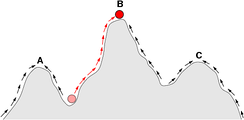 In this sketch of a fitness landscape, a population can evolve by following the arrows to the adaptive peak at point B, and the points A and C are local optima where a population could become trapped.