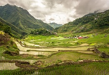 The Batad rice terraces, The Rice Terraces of the Philippine Cordilleras, the first site to be included in the UNESCO World Heritage List cultural landscape category in 1995.[29]