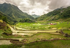 Batad rice terraces in the Philippines, a UNESCO World Heritage site.