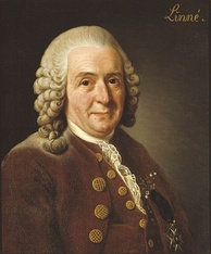 Carl Linnaeus created the binomial system for naming species.