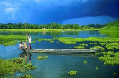 A view of Majuli