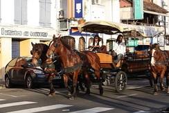 A carriage on a street in Martinique, one of the Caribbean islands that has not become independent. It is an overseas region of France, and its citizens are full French citizens.