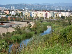 Playa Vista from the south, with Bluff Creek in foreground