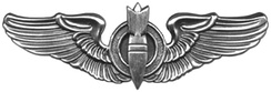 Bombardier Badge (officer)