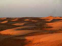 Sand dunes in the city outskirts