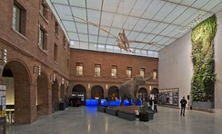Entry hall of the Muséum de Toulouse