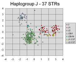 A principal components analysis scatterplot of Y-STR haplotypes calculated from repeat-count values for 37 Y-chromosomal STR markers from 354 individuals.  PCA has successfully found linear combinations of the different markers, that separate out different clusters corresponding to different lines of individuals' Y-chromosomal genetic descent.