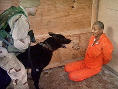 Iraqi prisoner threatened with a dog.