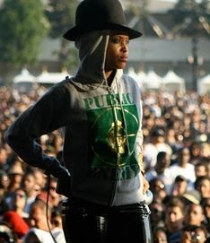 Erykah Badu at Jazz Reggae Festival