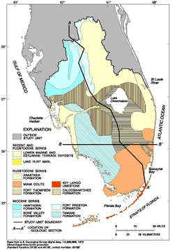 Limestone formations in South Florida. Source: U.S. Geological Survey