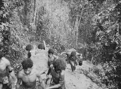 Papuan men in native dress carry a wounded soldier on a stretcher up a steep track surrounded by dense jungle