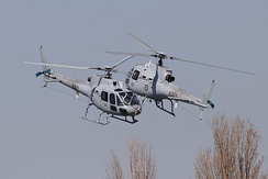 Royal Australian Navy Squirrel helicopters during a display at the 2008 Melbourne Grand Prix