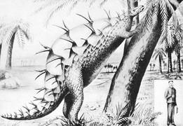 Сравнение стегозавра с ростом человека