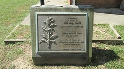 White burley tobacco monument dedicated on August 7, 1964 and located at the Ohio Tobacco Museum in Ripley.