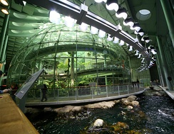 The 90-foot (27 m) diameter spherical glass dome enclosing the rainforest exhibit