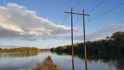 The Tar River overflowing its banks near Pitt–Greenville Airport on October 12; it later crested at 24.5 feet (7.5 m).[138]