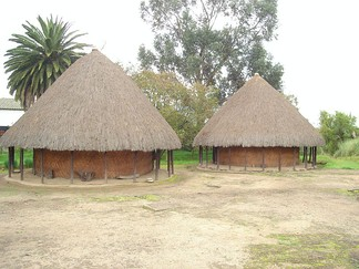 The bohíos of the Muisca were circular and constructed on a slightly elevated platform against flooding. The roofs were made of plant material and the houses did not have rooms, yet one open space