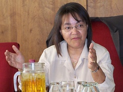Mayor Patricia de Lille.