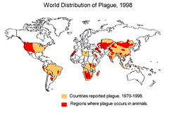 Worldwide distribution of plague-infected animals, 1998
