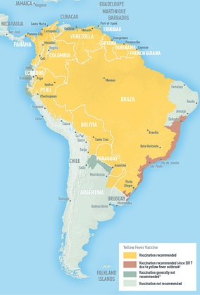 Areas with risk of yellow fever in South America (2018)