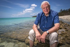 The nature documentaries of David Attenborough, such as The Blue Planet, Planet Earth and Life on Earth, are produced by the BBC Natural History Unit, the largest wildlife documentary production house in the world.[191]