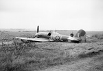 Hawker Typhoon IB R8752 of No. 1 Squadron, written-off after crash-landing in a field near its base at Lympne on 2 June 1943.