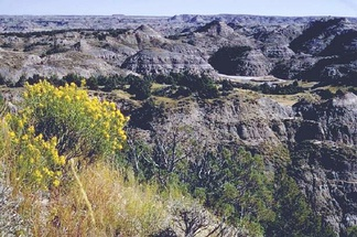After the battle, Sully pursued the Sioux through the difficult terrain of the Badlands of North Dakota near present-day Theodore Roosevelt National Park.
