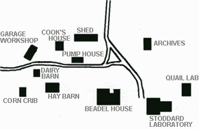 Diagram of Tall Timbers layout.