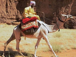 A Toubou man near rocky lands in north Chad