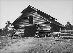 Barn on tenant's farm in Walker County, AL (1937), symbol of AAA efforts