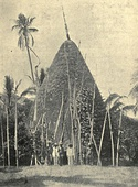 Photo of a native house from New Caledonia, circa 1906