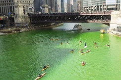 The Chicago River dyed green[118]