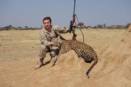 Любитель охоты с трофеем леопарда (Намибия, 2014 год)